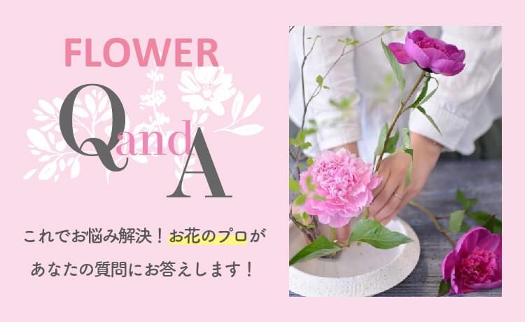 question_box